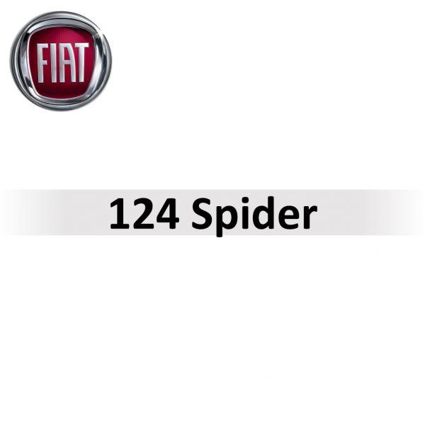 Getriebeprobleme beim 124 Spider
